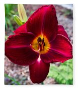 Red Lady Lily 4 Fleece Blanket