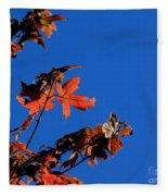 Red Leaves Blue Sky Fleece Blanket