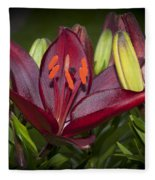 Red Lily 6 Fleece Blanket