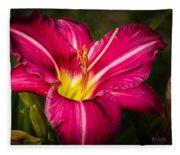 Red Magic Daylily Fleece Blanket