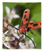 Red Milkweed Beetle Fleece Blanket