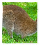 Red Necked Wallaby Fleece Blanket