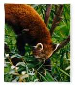 Red Panda Tree Climb Fleece Blanket