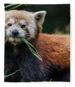 Red Panda With An Attitude Fleece Blanket