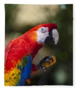 Red Parrot  Fleece Blanket