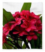 Red Plumeria Fleece Blanket