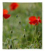 Red Poppies 2 Fleece Blanket
