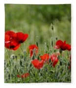 Red Poppies 3 Fleece Blanket