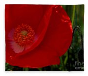 Red Poppies  Fleece Blanket