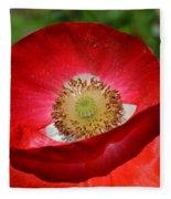 Red Poppy 3 Fleece Blanket