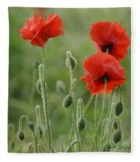 Red Red Poppies 1 Fleece Blanket