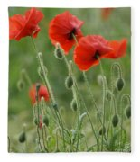 Red Red Poppies 2 Fleece Blanket
