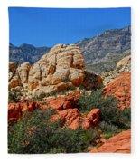 Red Rock Canyon 5 Fleece Blanket