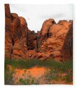 Red Rock Canyon. Fleece Blanket