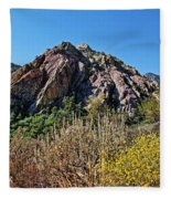Red Rock Canyon With Foliage Fleece Blanket
