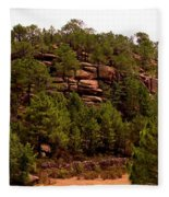 Red Rock Green Forest No3 Fleece Blanket