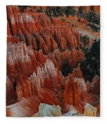 Red Rock Fleece Blanket