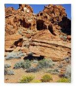 Red Rock Land Fleece Blanket