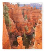 Red Rocks - Bryce Canyon Fleece Blanket
