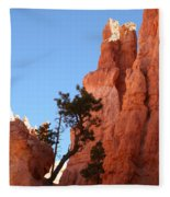 Red Rocks Of Bryce Canyon  Fleece Blanket