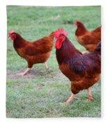 Red Rooster And Hens Fleece Blanket