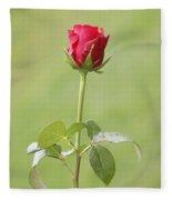 Red Rose Bud 1 Fleece Blanket