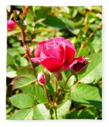 Pink Rose Buds Fleece Blanket