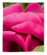 Red Rose Rising Fleece Blanket