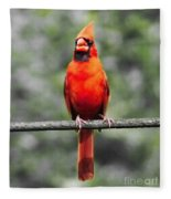 Red Royalty Fleece Blanket