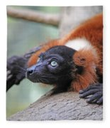 Red-ruffed Lemur Fleece Blanket
