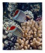 Red Sea Beauty 5 Fleece Blanket