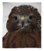 Red Shouldered Hawk Close Up Fleece Blanket
