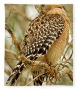 Red Shouldered Hawk Fleece Blanket