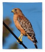 Red-shouldered Hawk On A Wire Fleece Blanket
