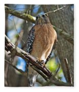 Red-shouldered Hawk On Branch Fleece Blanket