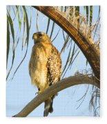 Red-shouldered Hawk On The Palm Tree Fleece Blanket