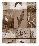Red-shouldered Hawk Poster - Sepia Fleece Blanket