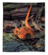 Red Spotted Newt Fleece Blanket