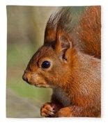 Red Squirrel 2 Fleece Blanket