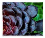 Red Succulents Fleece Blanket
