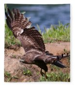 Red Tail On The Hunt Fleece Blanket