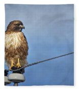 Red Tail On Watch Fleece Blanket