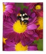Red-tailed Bumble Bee Fleece Blanket