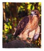 Red Tailed Hawk - 54 Fleece Blanket