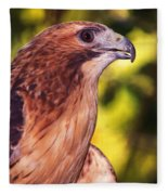 Red Tailed Hawk - 59 Fleece Blanket