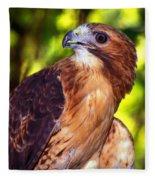 Red Tailed Hawk - 66 Fleece Blanket