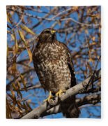 Red-tailed Hawk In A Willow Tree Fleece Blanket