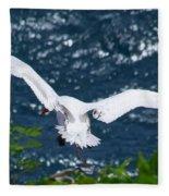 Red Tailed Tropic Bird Fleece Blanket