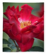 Red Velvet 1a Fleece Blanket