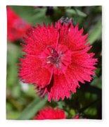 Red Winery Flower Fleece Blanket